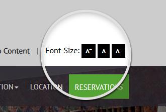 Font Size Widget